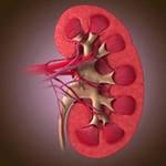 Пиелонефрит - лечение народными средствами